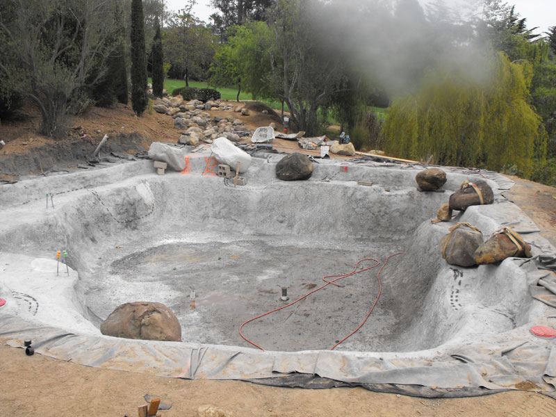 1000 images about dog pool on pinterest drinking for Cement fish pond