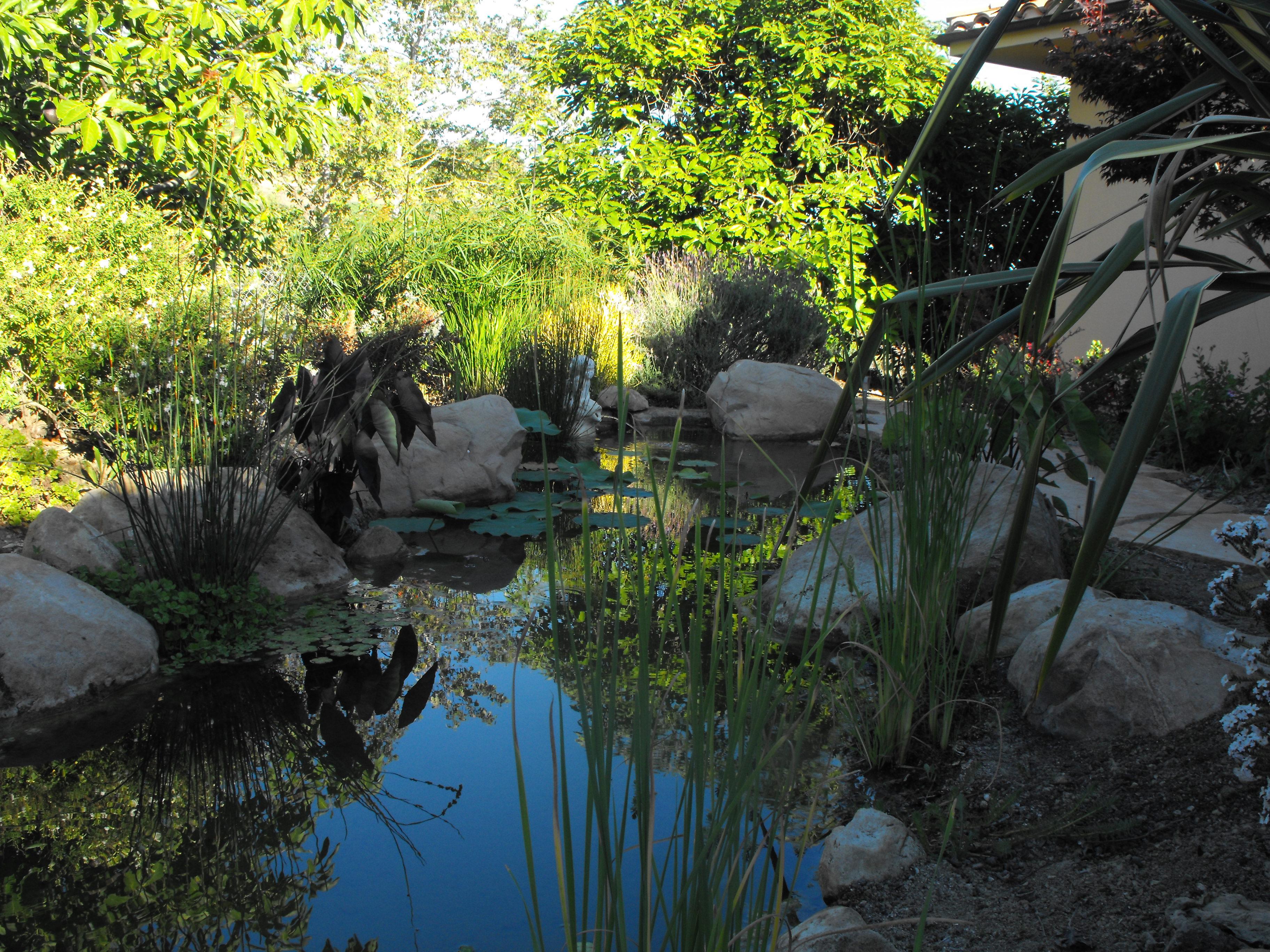Front Entryway Garden Ideas Front Entryway Garden Pond