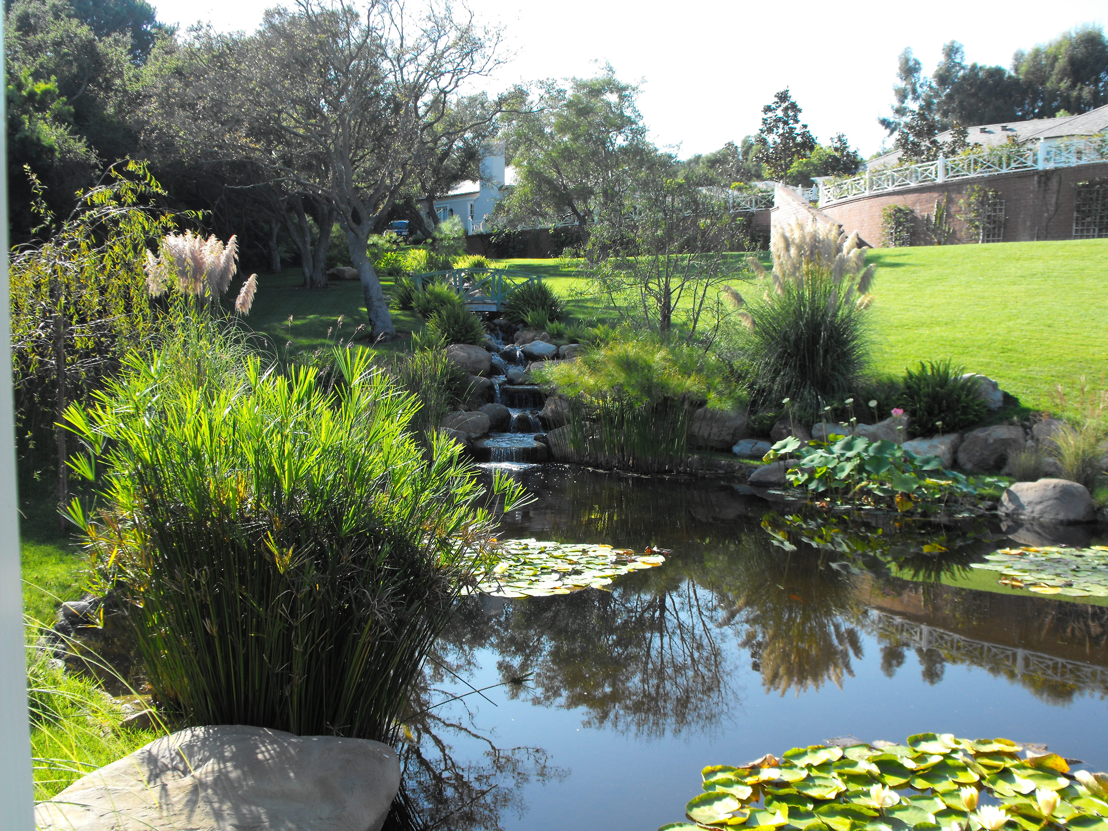 garden pond ideas | Garcia Rock And Water Design Blog